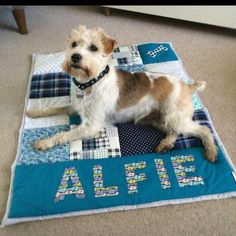 Perfect gift for the dog lover & cosy for the dog too! Personalised patchwork quilts handcrafted in your choice of colours Lovers Gift, Pet Lovers, Dog Lover Gifts, Dog Gifts, Car Blanket, Cot Quilt, Personalised Cushions, Activity Mat, Fabric Gifts
