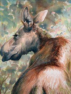 Moose by ~BrianLouisPomerantz on deviantART