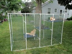 this would be nice for my kitties PVC temporary dog kennel (staked down) for camping? @Joseph Cohen Jonge Blue