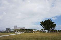 Perez art museum - Miami
