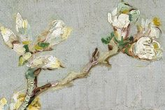 A Turtle's Salon du The Blossoming Almond Branch in a Glass - Vincent van Gogh Detail