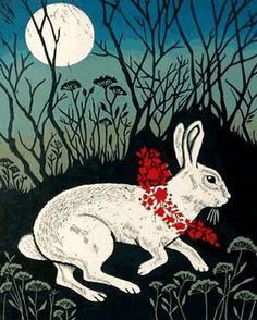 Rabbit in the brush