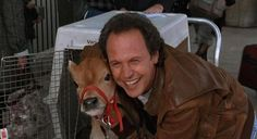 NORMAN! (Oh, and Billy Crystal. From City Slickers.)