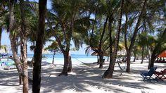 Perfect Honeymoon!   Coco Plum Island Resort (Coco Plum Cay, Belize) - Hotel Reviews - TripAdvisor Belize All Inclusive, Belize Hotels, All Inclusive Honeymoon, Romantic Honeymoon, Plum Island, Island Resort, Hotel Reviews, Trip Advisor, Beach