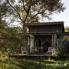 Staying at Simbavati River Lodge usually means you'll get to see elephants hippos and warthogs wandering past the lodge or near the tents for a close-up viewing experience. River Lodge, African Safari, Tents, Lodges, Elephants, Wilderness, Wander, Past, Wildlife