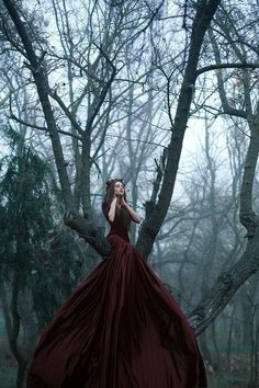 I like the foresty background and the fact that her outfit is very OTT and grand.  The colours are nice too.