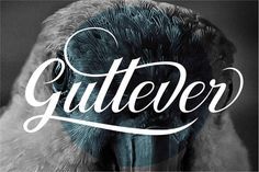 Buy Gullever Font by Hardertypefoundry on GraphicRiver. gullever font was made to be a good and beautiful font,curves and lines are so soft which makes this font look pretty. Brush Script Font, Script Fonts, Nice Fonts, Fancy Fonts, Pretty Fonts, Calligraphy Fonts, Typography Fonts, Hand Lettering, Typography Design