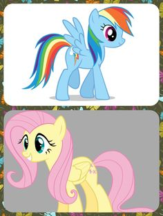 Rainbow and Fluttershy