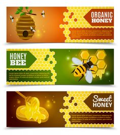 Conjunto de banners de mel Vetor grátis Best Foods For Energy, Bee Icon, Honey Label, Banners, Bee Keeping, Box Design, Lorem Ipsum, How To Stay Healthy, Diy And Crafts