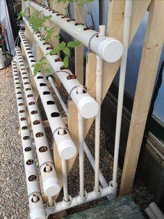 DIY aquaponics concept