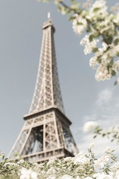 Paris Photograph - White Blossoms at the Eiffel Tower, Spring in Paris, Large Wall Art, French Home Decor http://ift.tt/1sBgNaG
