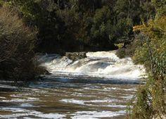 Montana Falls Cascades  http://www.41southtasmania.com/