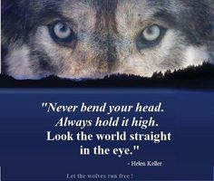 Wolfs love them > so true>