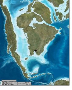 Map of North America during the Late Cretaceaous, 85 million years ago, showing one known coastal location of an extinct palm Protoarecoidea bucahanaensis 25 million years after this. (60 Million years ago) Note extensive inland sea in North America at this time. The presence of palm fossils indicate a much warmer and wetter climate 50-60 million years ago, similar to the Gulf coast states today. STAR = Collecting Locality. Modified paleogeographic map produced by Colorado Plateau…