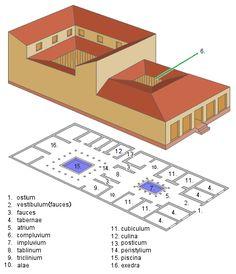 Las domus eran las viviendas de las familias de un cierto nivel económico, cuyo cabeza de familia. llevaba el título de dominus.
