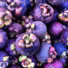 Tropical Fruit, Mangosten, Thailand - Only the white flesh of the purple mangosteen is edible