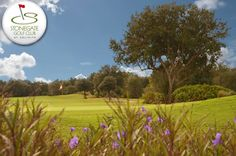 $39 for 18 Holes with Cart and Range Balls at Stonegate #Golf Club at Solivita in Kissimmee, #Florida!