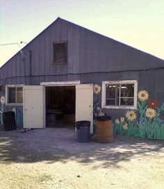 Painting Shed Siding...