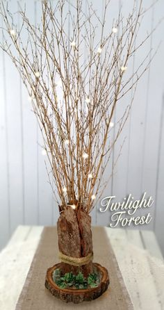 enchanted forest theme diy - Google Search