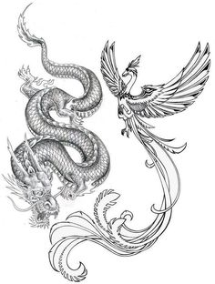 Concept idea for my final tattoo - preferably with a more Chinese style phoenix, to go on the left side of my back. Looking to get this done at Inkdependent Tattoos. Associated with Chinese symbolism, both the dragon and phoenix are used in wedding ceremonies