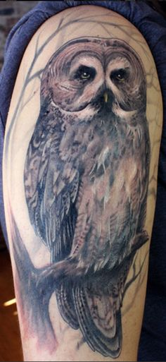 whoo whoo! i'd like my owl tattoo to be as realistic as this one.