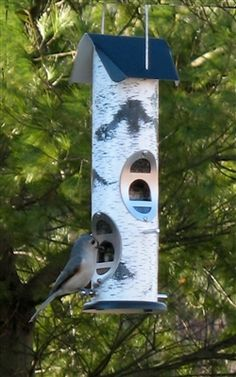 Birch Log Mixed Seed.  Attractive birch tree graphics. Includes our new EZ CLEAN snap out base. Lifetime warranty against squirrel damage. #squirrelresistant #birdfeeder