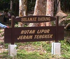 hutan-lipur-di-malaysia