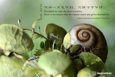 不怕一丈走不到,  只怕寸步不移。    ~證嚴法師靜思語~    Provided we take the first initiative, there is no reason why we cannot reach any given destination.    ~Jing-Si Aphorisms by Master Cheng Yen~