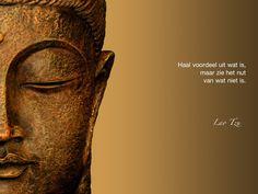 Haal voordeel uit wat is, maar zie het nut van wat niet is. / Lao Tzu