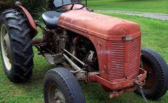 antique massey ferguson work tractor at White Bridge Farm