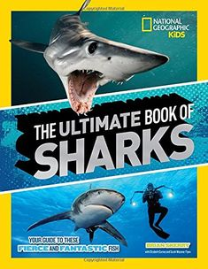 40 Best Sharks images in 2019 | Shark, Shark books, Books