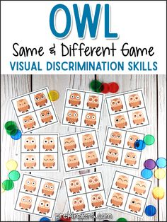 "Owl ""Same & Different"" Visual Discrimination Activity (free; from PreKinders)"