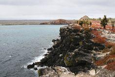 South Plaza Island. #Galapagos #Cruises #Nature #Landscapes #NemoCruises #Travel #Islands