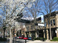 downtown Greenville, SC - lived in Simpsonville for a year