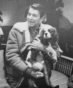 Ronald Reagan, President Ronald Reagan holding King Charles spaniel First Dog Rex. (Photo by Pete Souza/White House/Time Life Pictures/Getty Images), American Presidential Pets King Charles Dog, King Charles Spaniel, Cavalier King Charles, Famous Dogs, Famous People, Celebrity Dogs, President Ronald Reagan, American Presidents, New Puppy