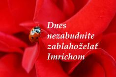 Dnes 5. novembra oslavujú meniny všetci IMRICHOVIA! VŠETKO NAJLEPŠIE!