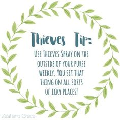 Find+our+favorite+Thieves+tips+at+Zeal+and+Grace!