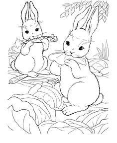 Farm animal coloring page Mommy rabbit and her baby rabbits