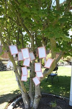 baby shower outdoor decor.  picnic themed