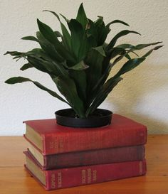 This charming book planter is made with three vintage used books in various shades of red. By MyBooklandia on Etsy.  #stacked book decor, #stacked book planter, #upcycled books