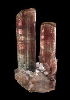 Tourmaline  Col. Murta Mine, Brazil  94mm  Vinnie Rigatti Collection : Tourmalines : Mineral Photographer - Professional Gemstone and Specimen Photography