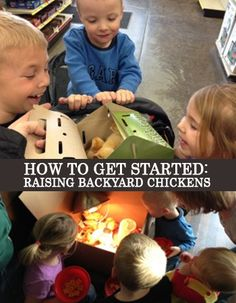 Ever thought of raising backyard chickens? Here's tips on how to get started. It's easier than you would think!