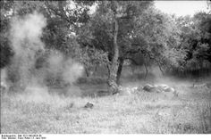 German paratroopers executing civilians on Crete for shooting at them during the battle, June 1941, part 6 of 7.