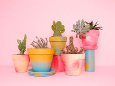 Image about pink in Cactus 🌵 by ⚓Mamey⚓ on We Heart It Cacti And Succulents, Planting Succulents, Cactus Plants, Cactus E Suculentas, Plants Are Friends, Flower Pots, Flowers, Indoor Plants, Hanging Plants