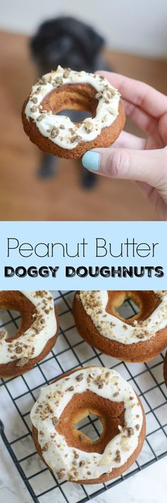 Make some homemade Peanut Butter Dog Doughnuts for your special pup!