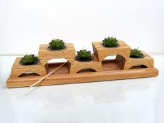 Cool idea for succulents! (via #spinpicks)
