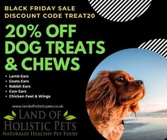 "Land of Holistic Pets on Instagram: ""Check out our #blackfriday sale with 20% off all treats and chews including a variety of dehydrated natural chews great for cleaning your…"" Healthy Pets, 20 Off, Dog Treats, Cleaning, Natural, Check, Dogs, Instagram, Doggies"