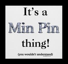 Its a Min Pin thing!