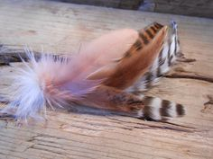The GEORGIA PEACH Collection.Boutonniere Tie Fly Wedding Pheasant Feather Fishing Groom Men White South Lapel Gift Him Buttonhole Pin Soft by TieFly on Etsy