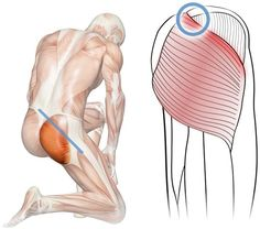 Diagram showing the location of Perfect Spot No. 12 in the superomedial edge of the gluteus maximus muscle of the buttocks. Middle Back Pain, Upper Back Pain, Low Back Pain, Back Pain Quotes, Message Therapy, Trigger Point Massage, Good Back Workouts, Relieve Back Pain, Massage Benefits